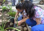 Patio Rayos Hospital del Salvador: El cuarto proyecto realizado por Fundación Inspira